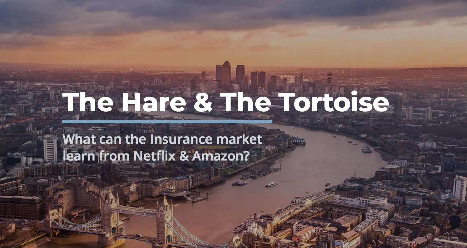 Read more about the article The Hare & The Tortoise